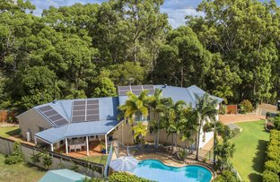 Picture of 18 Goodenia Court, Birkdale QLD 4159