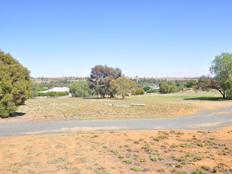 49 Pretoria Avenue, Junee NSW 2663, Image 1