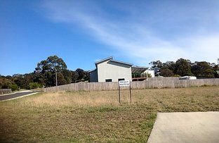 Picture of 2 Patsy Court, Coles Bay TAS 7215