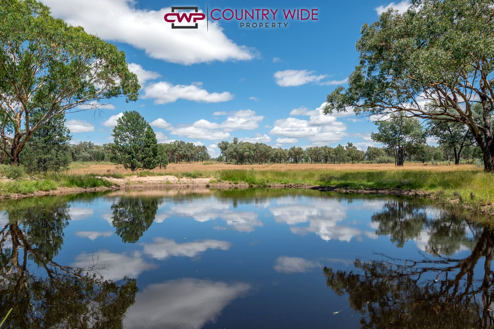 730 Wallangra Road, Ashford NSW 2361, Image 0