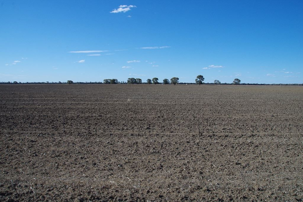 497 Nuable Road, Narrabri NSW 2390, Image 0