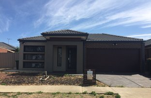 Picture of 40 Claret Ash Boulevard, Harkness VIC 3337