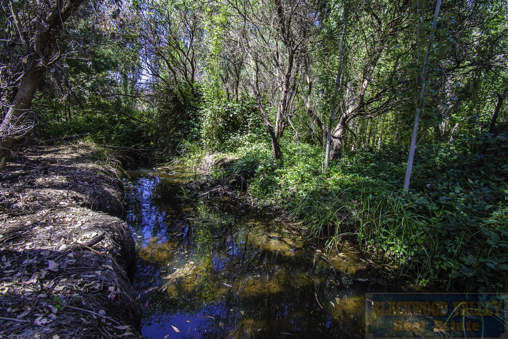 112 Carbunup Brook Road, Sunnyside WA 6256, Image 2