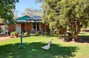Picture of 2416 Middleton Road, Lockington VIC 3563