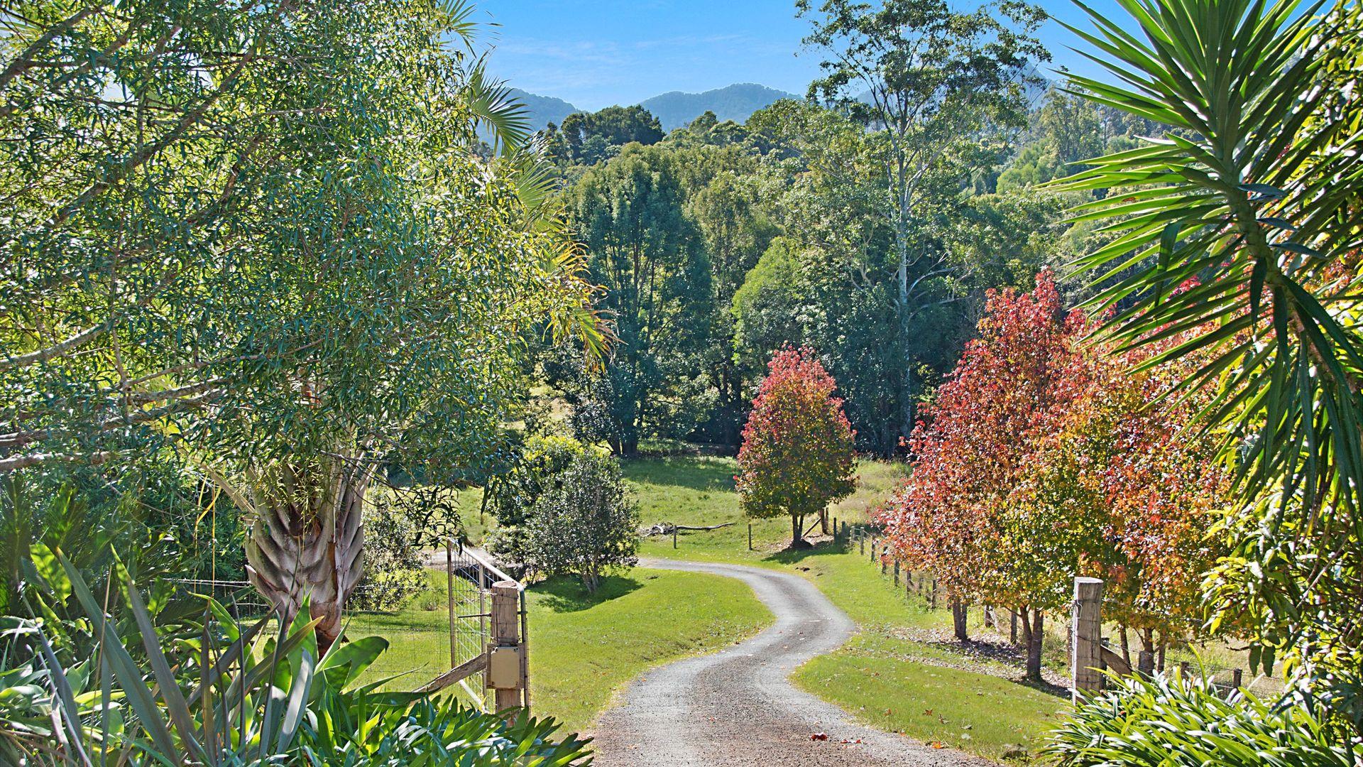 335 Chilcotts Road, Chillingham NSW 2484, Image 1