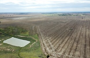 Picture of 'Hazelwood', Narromine NSW 2821