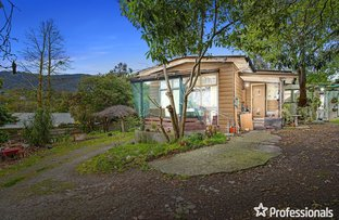 Picture of 5 Greenhills Avenue, Montrose VIC 3765