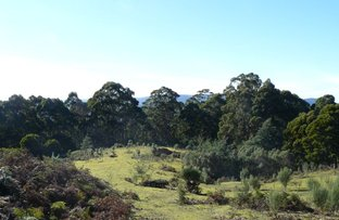 Picture of Lot 1 Lookout Road, Port Arthur TAS 7182