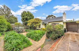 Picture of 86 Nunyah  Avenue, Park Holme SA 5043