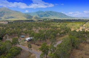 Picture of 8 Maconachies Road, Majors Creek QLD 4816