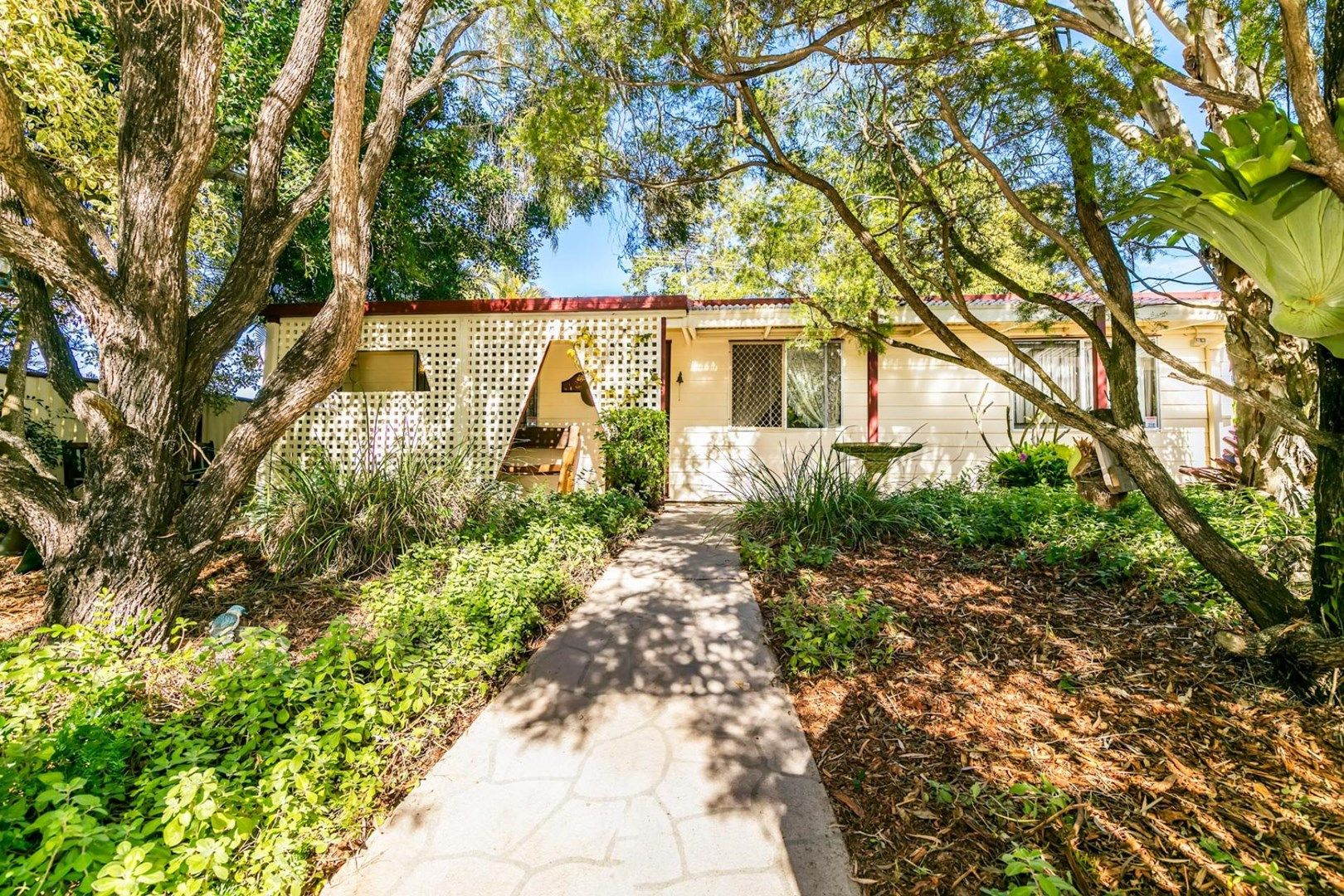 4 Breynia  Street, Kingston QLD 4114, Image 0