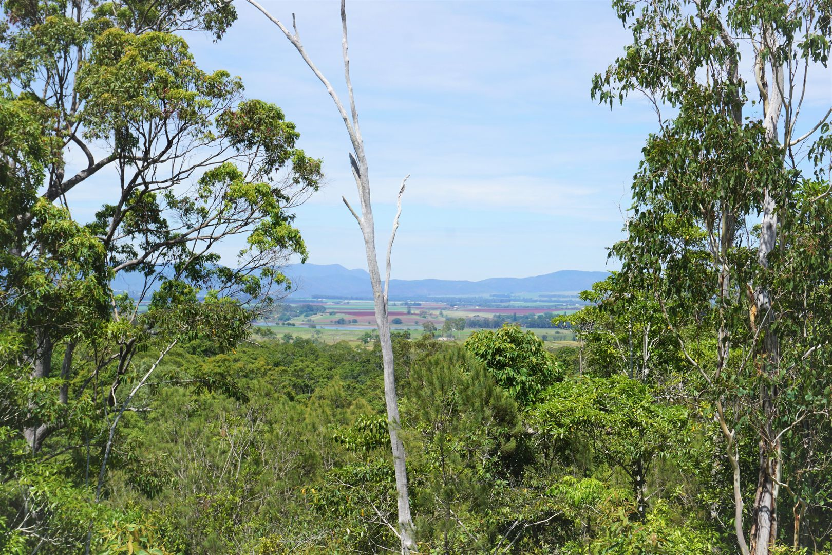 109 Jerome Road, Barrine QLD 4872, Image 0
