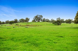 Picture of Lot 9 Sugarloaf Hill Road, Angaston SA 5353