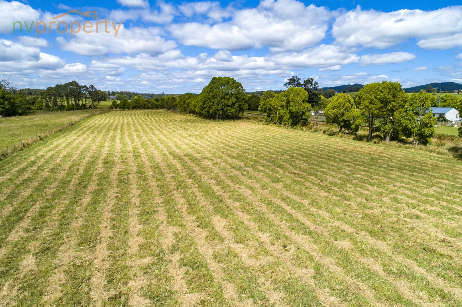 Warrell Creek NSW 2447, Image 1