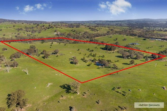 Picture of 485 Strath Creek Road, BROADFORD VIC 3658