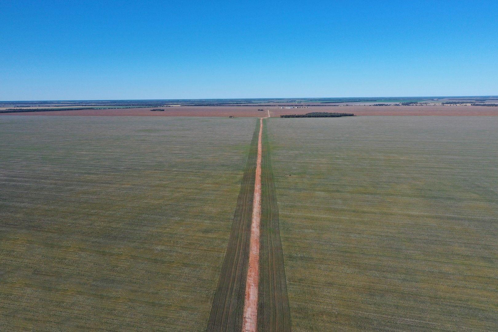 1340 Yulabilla Road, Condamine QLD 4416, Image 0