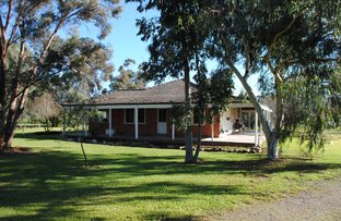 Picture of 996 Yabba Road, Yabba North VIC 3646