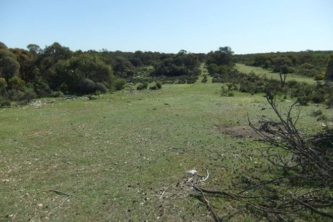 Picture of Lot 229 Levens Road, WAROOKA SA 5577