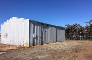 Picture of 27 Hayman Drive, Cummins SA 5631