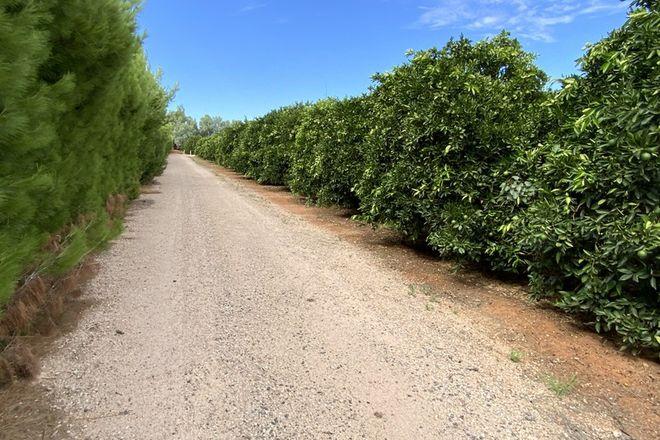 Picture of 159 Kidman Way, HANWOOD NSW 2680