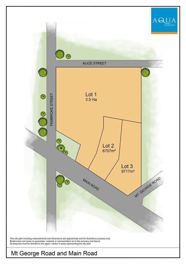 Lot 1 Cnr Main Road and Mt.George Road, George Town TAS 7253, Image 2