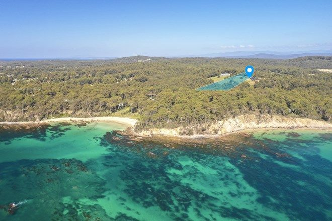 Picture of 8 Smugglers Cove, LILLI PILLI NSW 2536