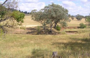 Picture of Gowrie NSW 2340
