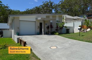Picture of 17 Tallowwood Place, South West Rocks NSW 2431
