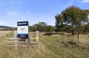 167 Strip Road, Little Swanport TAS 7190