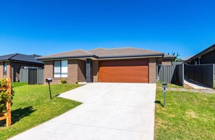 Picture of 29 Arrowfield Street, Cliftleigh NSW 2321