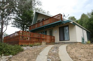 Picture of 14 Cobbon Cres, Jindabyne NSW 2627