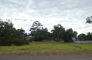 Picture of 52 Albany Hwy, Mount Barker WA 6324