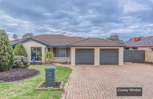 10 Southern Terrace, Connolly WA 6027