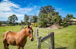 Picture of 48 Hazelwood Drive, Pottsville NSW 2489