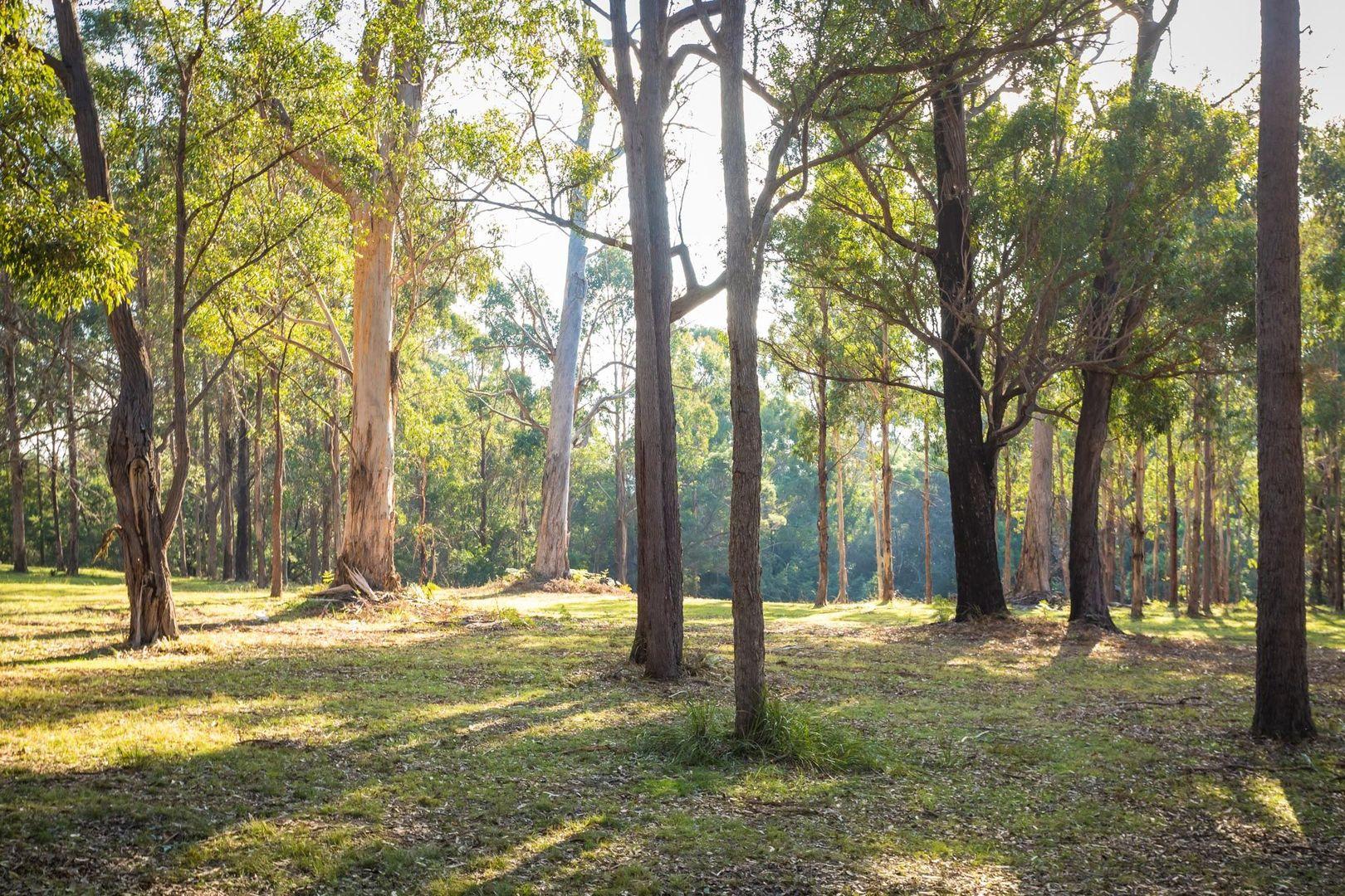 130 Bournda Road, Wallagoot NSW 2550, Image 2