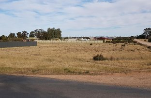 Picture of Lot 1 Vasey Road, Waikerie SA 5330