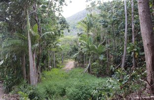Picture of 17 The Esplanade, Cooktown QLD 4895