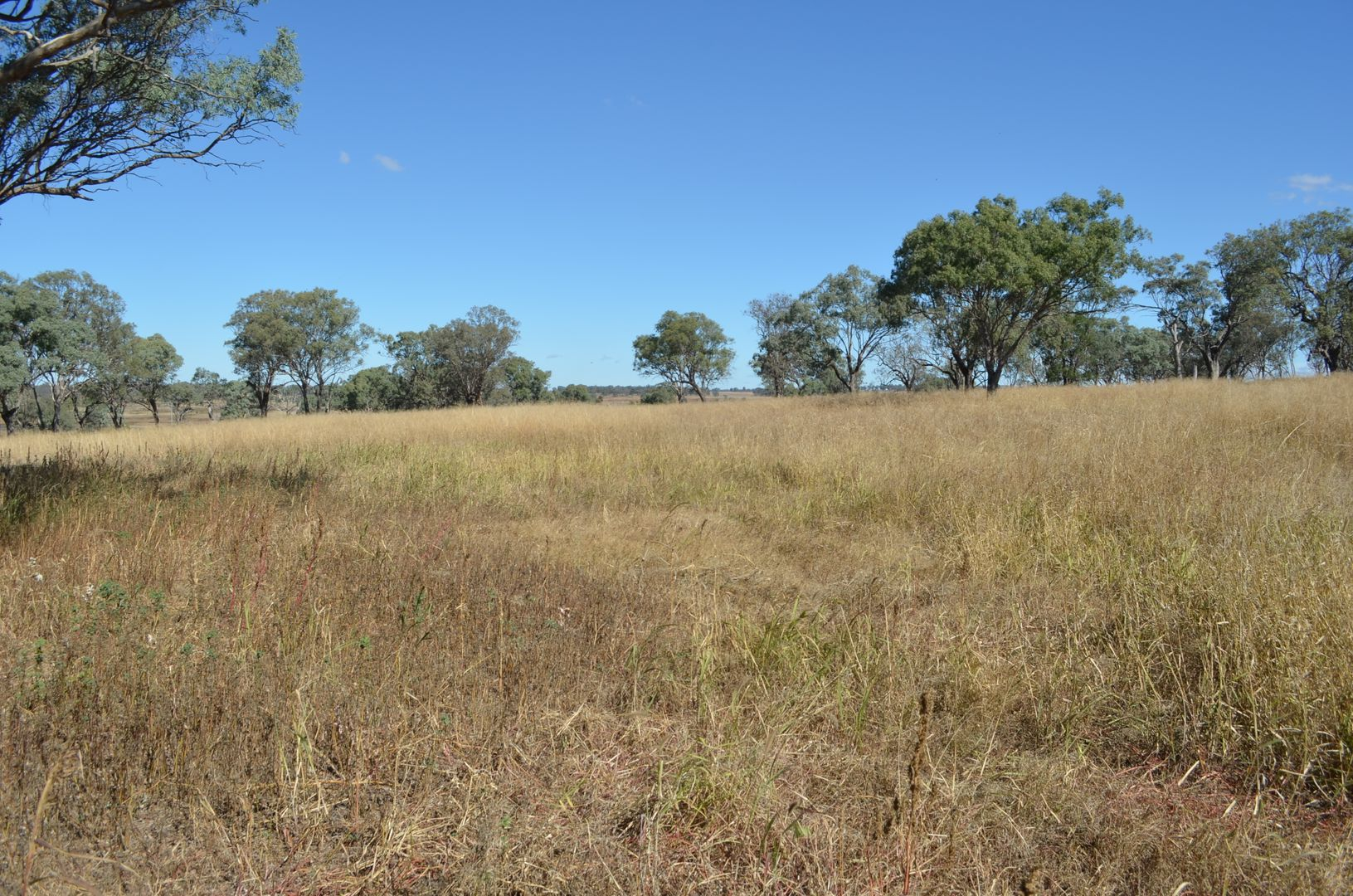 0 Cnr F Couper Rd & Gore Hwy, Westbrook QLD 4350, Image 1