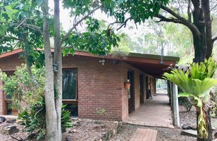 Picture of 398 Dennis Road, Cedar Vale QLD 4285