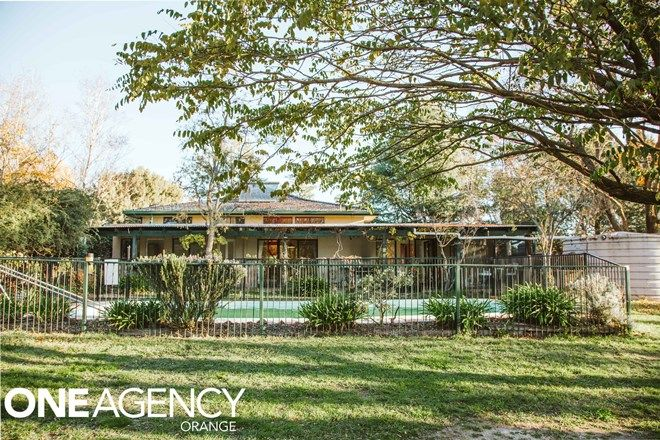 Picture of 2 Jumbuck Place, CLIFTON GROVE NSW 2800