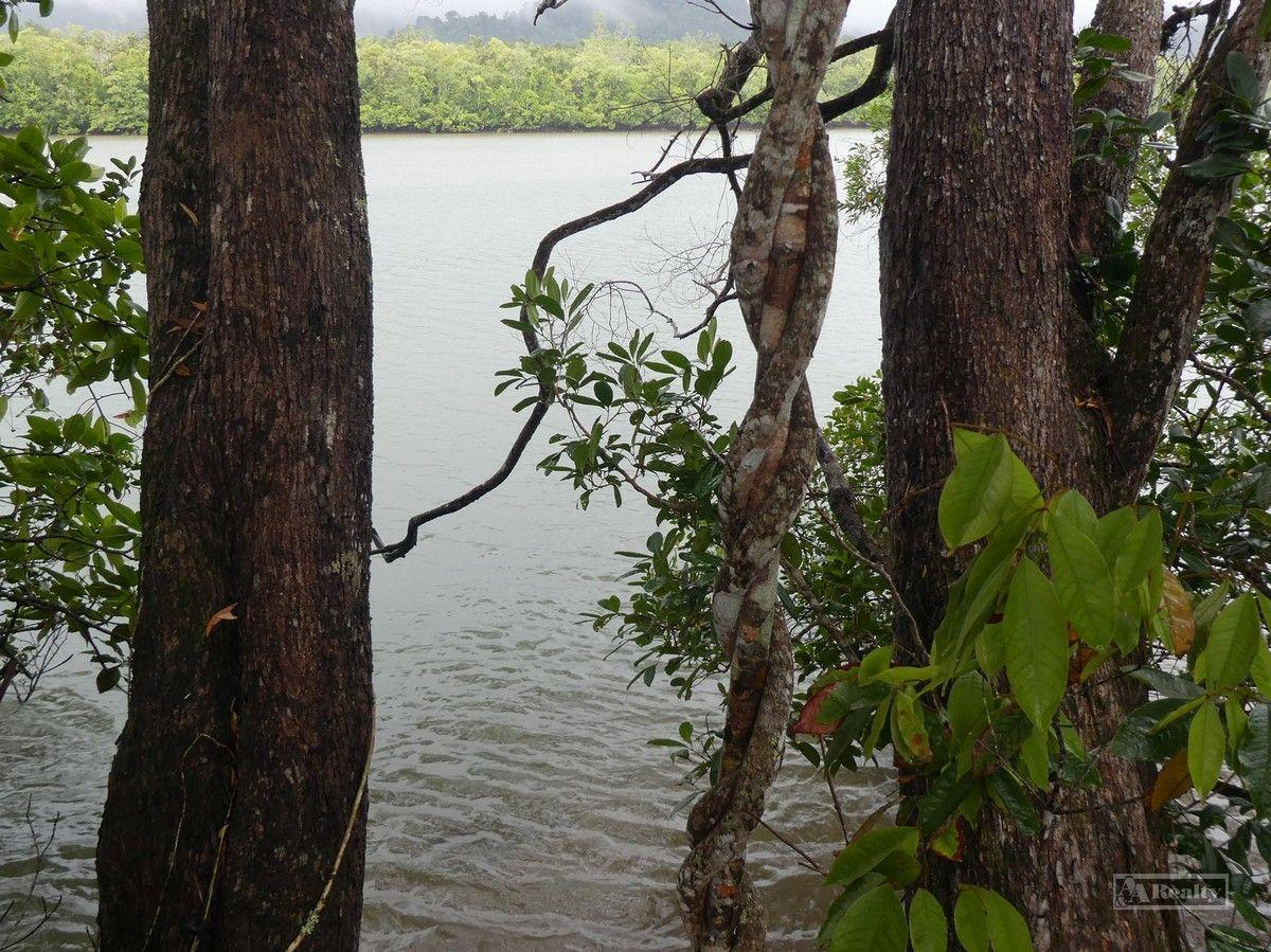Bellenden Ker QLD 4871, Image 1