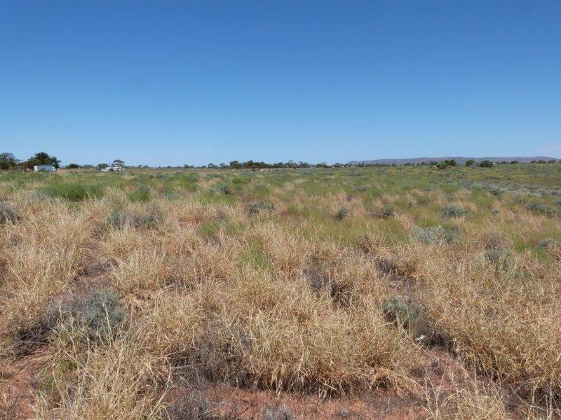 85-111 Press Road, Port Augusta West SA 5700, Image 1