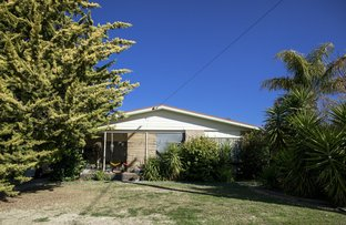 Picture of 17 Pascoe Street, Swan Hill VIC 3585