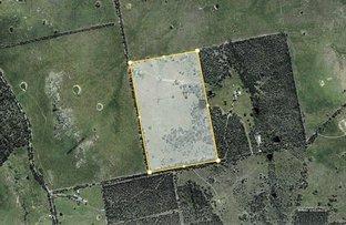 Picture of 137 KOPSHOFFE LANE, Indigo Valley VIC 3688