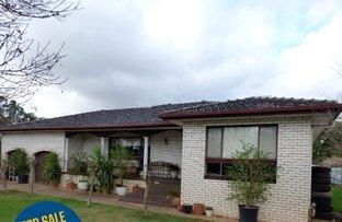 Picture of 35 Murrumbidgee Avenue, Griffith NSW 2680