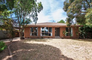 Picture of 22 White Avenue, Bayswater North VIC 3153