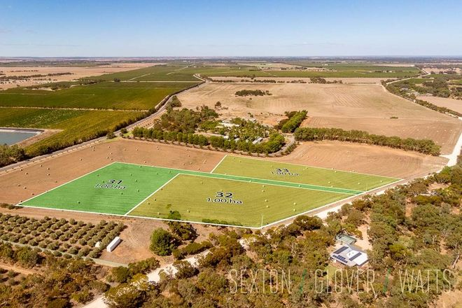 Picture of Lot 62 Angas Plains Road, BELVIDERE SA 5255