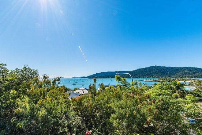Picture of 51 Airlie Crescent, AIRLIE BEACH QLD 4802