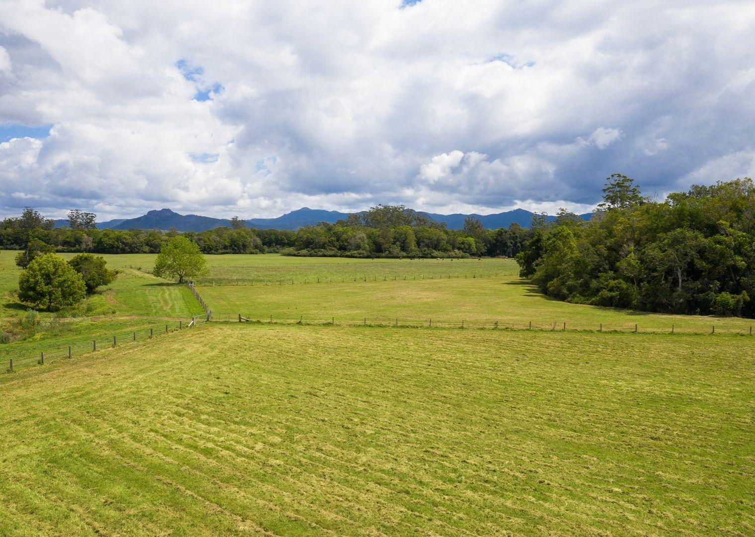 59 Tyrie Lane, Upper Lansdowne NSW 2430, Image 2