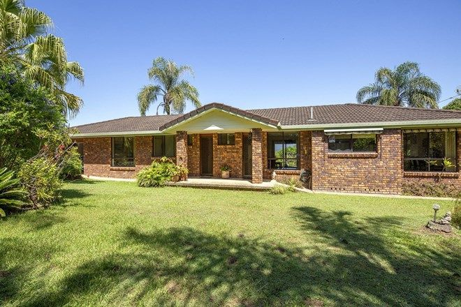 Picture of 444 Lower Buckra Benndini Road, BOWRAVILLE NSW 2449